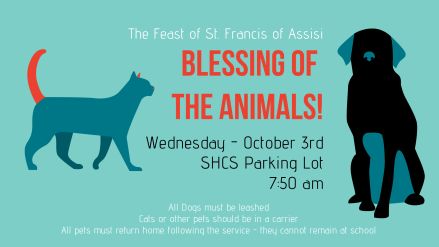 Blessing of the Animals (1)